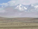 Tibet3_17